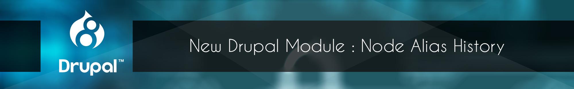 New Drupal Module Node Alias History_Blog